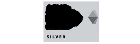 ASUS Silver Partner